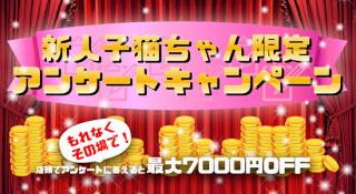 やんちゃな子猫布施 まさかの5000円キャッシュバック!!